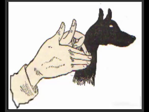 how to make animal shadow puppets with your hand best trick youtube