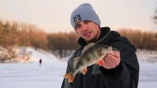 Окунь на балансир. Рыбалка со льда [NEW Спиннинг №24]