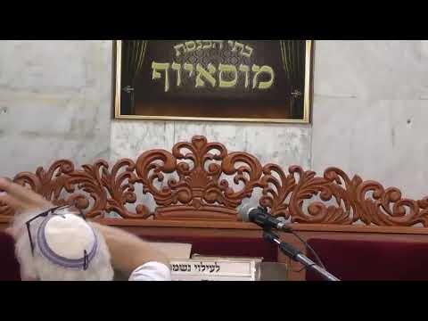 שידור חי בית הכנסת מוסיוף יום ראשון 21.7.19