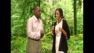 New Nimco Dareen And Qoomaal Songs   2010