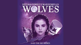 Wolves (Said The Sky Remix)
