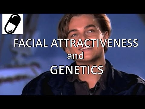 Why attractive faces are made not born- The IMPACT of genes on facial attractiveness
