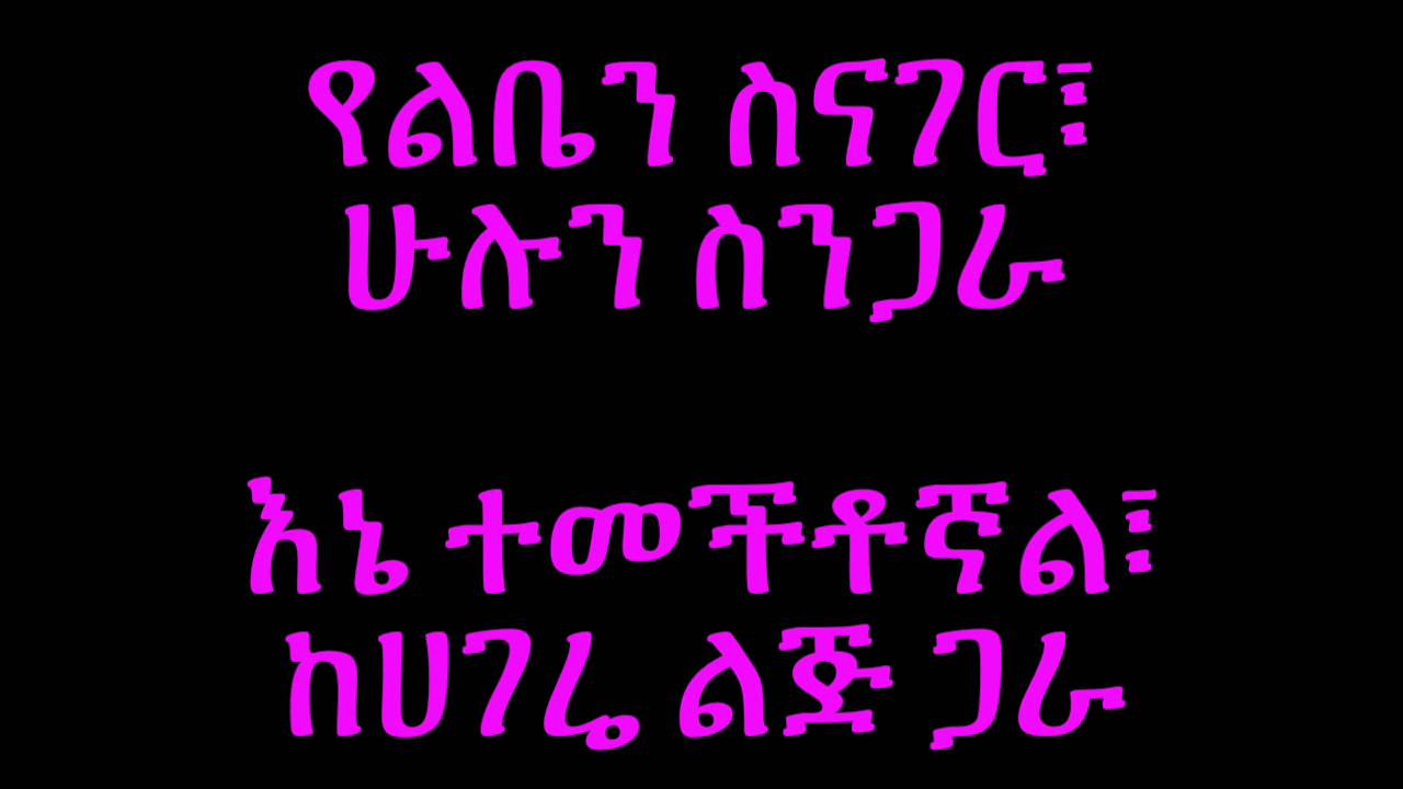 Abby Lakew Yene Habesha - Lyrics