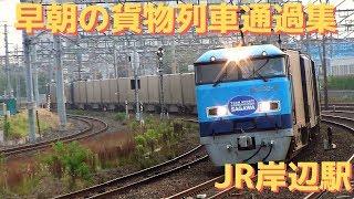 JR貨物 早朝の貨物列車通過集 JR岸辺駅 2018.6.22