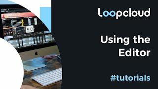 Using the Editor - Loopcloud 6