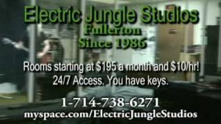 Electric Jungle Studios