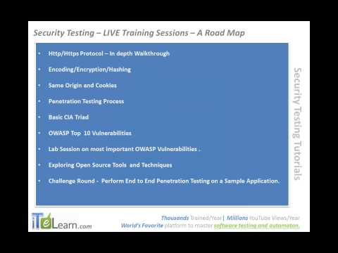 Software Security Testing How to become Software Security Testing Expert ITeLearn techniques
