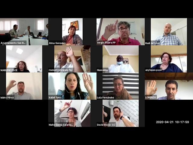 Pleno Extraordinario  20/04/2020 - (Videoconferencia)
