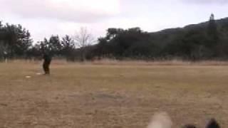 ゲリラ練習会inえびのでの練習風景です。JFAフリーフライト選手権デビュ...