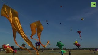 Летающие черепаха, медведь и статуя Свободы: в Берлине прошёл фестиваль воздушных змеев