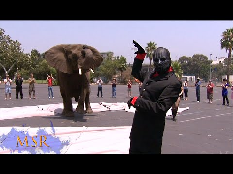 HOW TO MAKE AN ELEPHANT APPEAR!