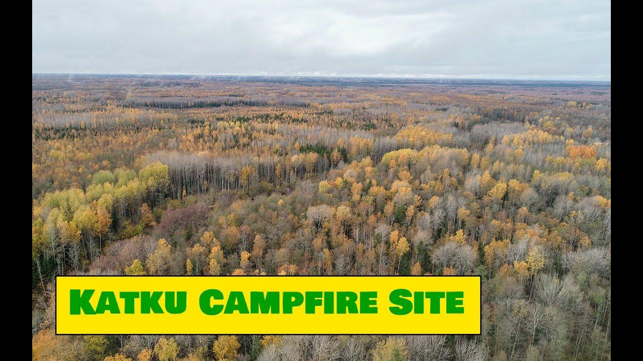 Autumn in Katku Campfire site in Pärnu County / Katku lõkkekoht sügisel - Estonian Nature