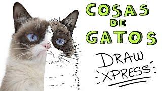 GATOS | DrawXpress