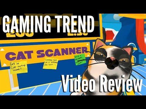 Cat Sorter Vr Review
