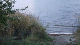 Poranny  Szybki Live Z Jeziora
