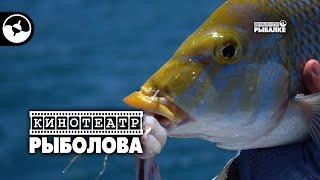 Рыболовное путешествие Австралия Часть 1 Кинотеатр рыболова