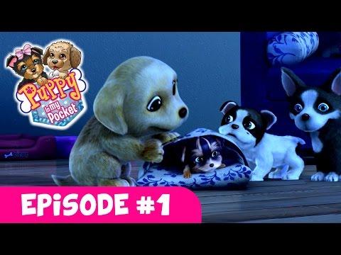 "Puppy In My Pocket - Webisode #1 ""Puppy Sleepover"""