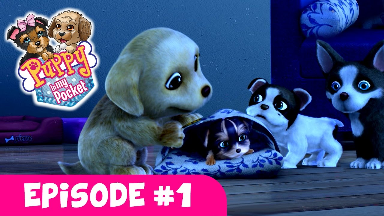 Puppy In My Pocket Webisode 1 Puppy Sleepover Youtube
