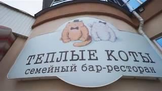 "Ресторан ""ТЕПЛЫЕ КОТЫ"""