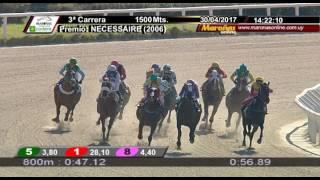Vidéo de la course PMU PREMIO NECESSAIRE