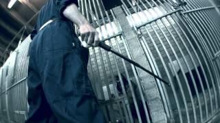 Fresku - Hedde Druksop ft. Theo Maassen)