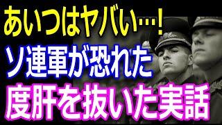 【すごい日本人】壮絶な最期を見せつけた「隼」!ポツダム宣言後の日本軍を襲ったソ連軍を恐怖に陥れた瞬間!昭和天皇の命を守り抜いた英霊たち