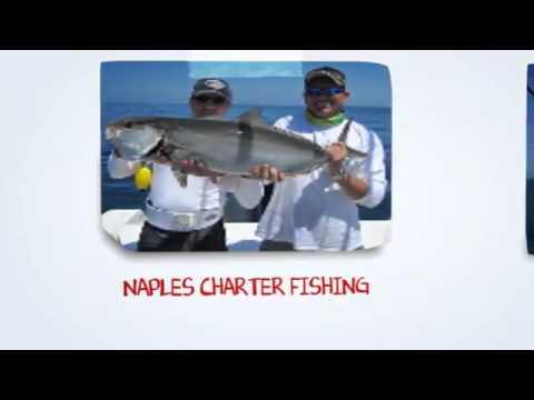 Charter Fishing  Naples FL | Inshore Fishing, Naples Fl,  Offshore Charter Fishing  In Naples