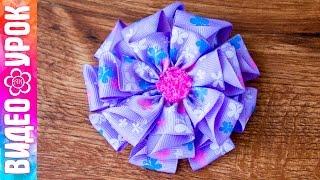 Цветок из репсовой ленты 2,5 см ✄ Kulikova Anastasia(В этом видео уроке я покажу как сделать красивый пышный цветок Канзаши из репсовой ленты шириной 2,5 см. Я..., 2015-09-04T10:30:00.000Z)