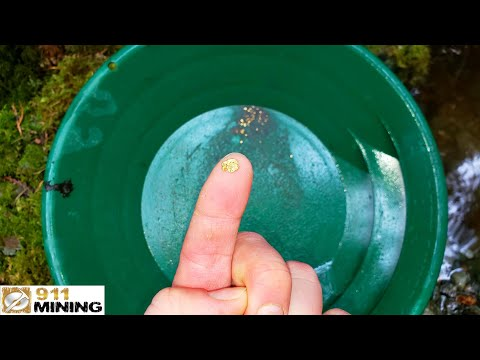 Finding Gold Nuggets At The Ultimate Placer Gold Deposit!