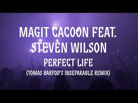 Magit Cacoon feat. Steven Wilson: Perfect Life (Tomas Barfod's Inseparable Remix)