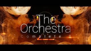 The Orchestra Contest 2021 - Thibaut Falgairette
