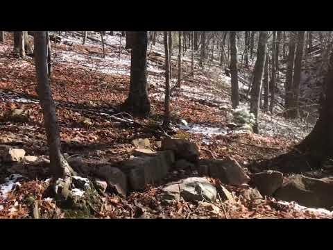 Appalachian Trail 2018 Day 50-Wilderness Road to Woods Hole Hostel