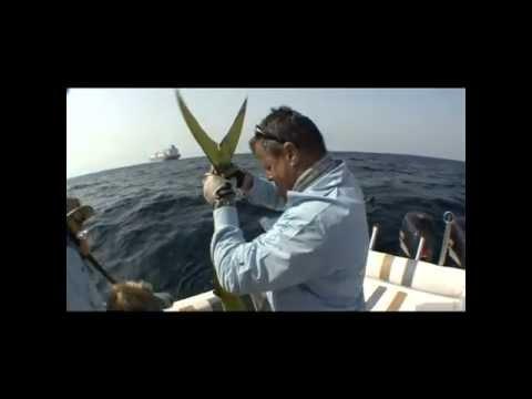 Off the Chart S4: show 22 Fujairah, Abu Dhabi fishing: entire show Dorado, queenfish, grunter