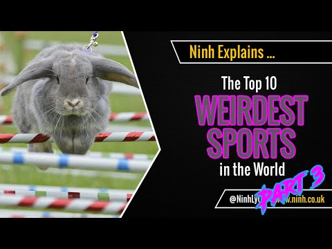 Top 10 Weirdest Sports in the World - Part 3 - EXPLAINED!