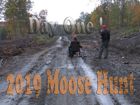 Day 0ne Moose Hunt 2019