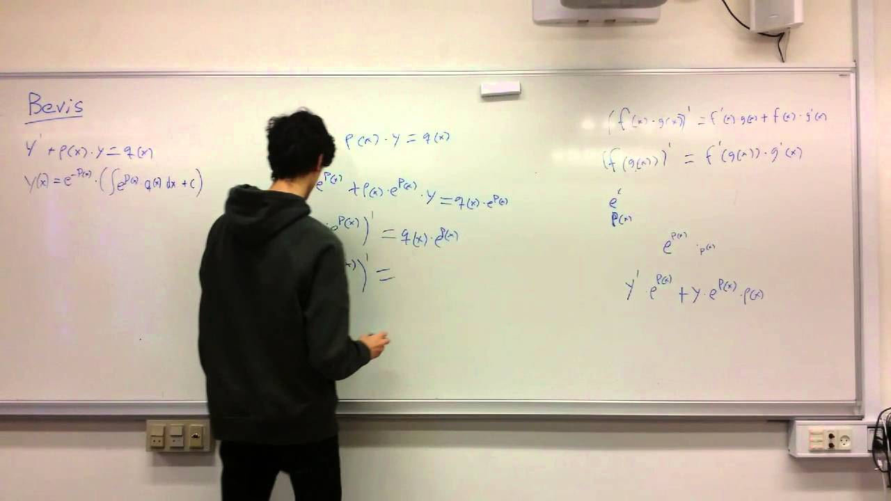 Lineære differentialligninger (Gruppe 2)