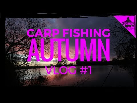 CARP FISHING IN AUTUMN THE CAMPAIGN BEGINS