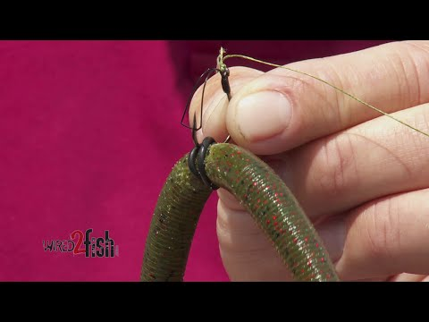 How to Rig Wacky Worms for More Hookups