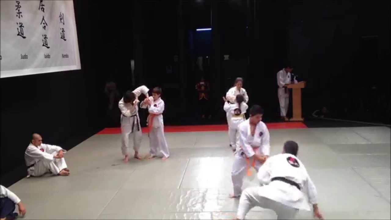 Aikido Perú - Exhibición de artes marciales APJ 2015 (Self