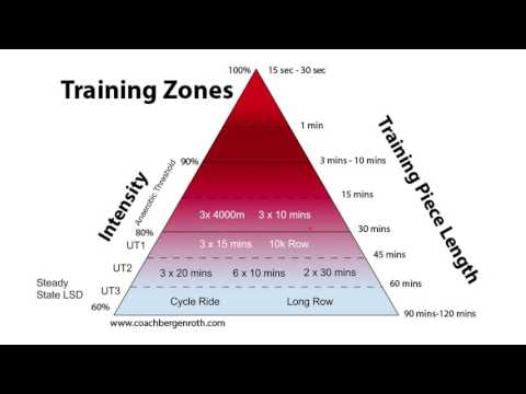 Exercise Training Zones For Endurance Athletes (Rowers)