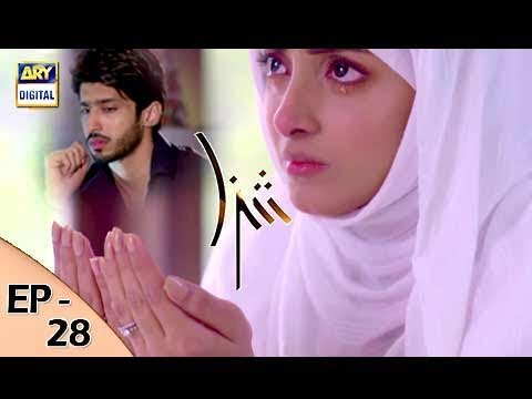 Shiza - Ep 28 - 14th October 2017 - ARY Digital Drama