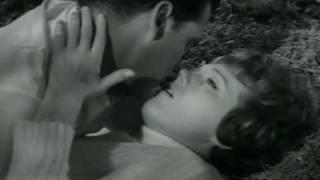Julie Andrews y James Garner en La Americanizacion De Emily