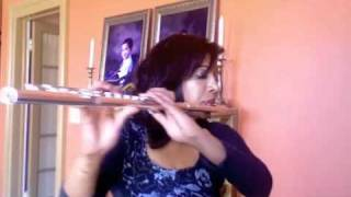 """Romantic Flight"" flute cover from ""How to Train your Dragon"""