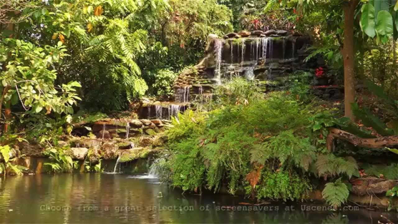 Fall Cottage Wallpaper Garden Waterfall Screensaver Video In Full Hd Youtube