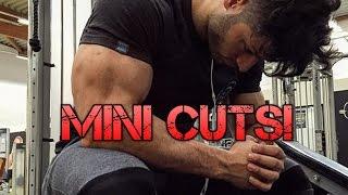 Mini Cuts | Trockener Muskelaufbau leicht gemacht!