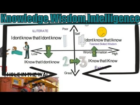 Knowledge Wisdom Intelligence - Difference