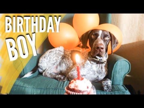 Dog's Birthday // Bubble Party