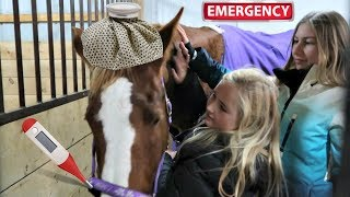 Video IS OUR HORSE GOING TO MAKE IT!?!? Day 324 (11/22/17) download MP3, 3GP, MP4, WEBM, AVI, FLV November 2017