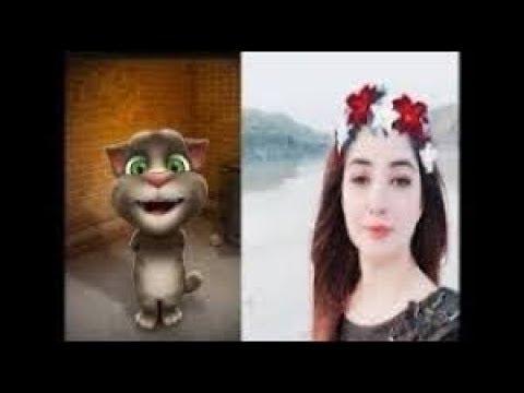 Gull Panra Pashto Song Za Yama Gull Panra  Talking Tom Cat