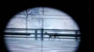 deer hunter 2005 demo 2